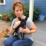 Photo for Sitter Needed For 4 Birds,5 Dogs In Poulsbo
