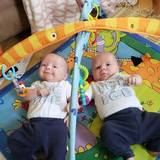 Photo for Part Time Nanny Needed For Infant Twin Boys