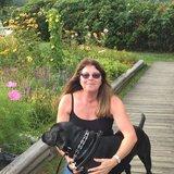 Photo for Walker Needed For 1 Dog In Framingham