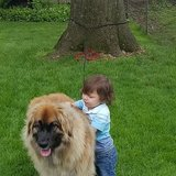 Photo for In Home Pet Sitter