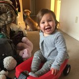 Photo for Part Time Nanny Needed For Toddler In Ballard
