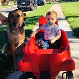 Photo for Nanny Needed For 2 Children In Lake Mills