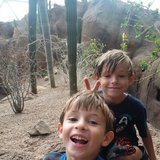 Photo for Babysitter Needed For 2 Children In Papillion.