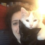 Photo for Looking For A Pet Sitter For 2 Cats In Berkeley
