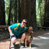Photo for Looking For A Pet Sitter For 1 Dog In Petaluma