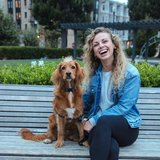 Photo for Dog Walker Needed 2 Days A Week In SF