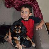 Photo for Babysitter Needed For 2 Children In DeKalb