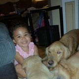 Photo for Looking For A Pet Sitter For 3 Dogs, 1 Cat In Killeen