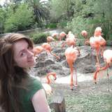 Hannah F.'s Photo