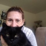 Photo for Sitter Needed For 2 Cats, 1 Bird In Bremerton