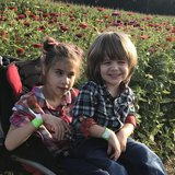 Photo for Seeking A Special Needs Caregiver With Cerebral Palsy Experience In Toms River.