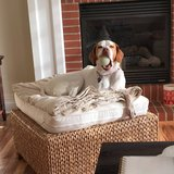 Photo for Looking For In-Home Pet Sitter For 1 Dog In Des Moines