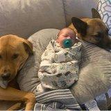 Photo for Part-Time Nanny/babysitter