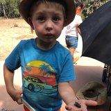 Photo for Outdoorsy 4 Year Old Boy Summer Nanny