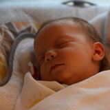 Photo for Nanny Needed For Our Little Miracle In Palatine