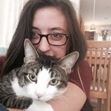 Photo for Cat Sitter Needed For Holiday Weekend