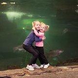 Photo for Babysitter Needed For 2 Children In Gypsum.