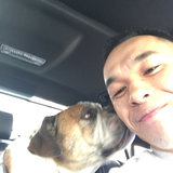 Photo for Seeking a Dog Groomer for 1 dog in San Gabriel