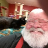 Photo for Looking For A Pet Sitter For 2 Cats In Ann Arbor