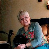 Photo for Seeking Part-time Senior Care Provider In Mountain Home