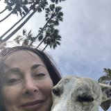 Photo for Looking For A Dog Walker  For 2 Dogs In Huntington Beach
