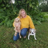 Photo for Looking For A Pet Sitter For 3 Dogs In Terra Ceia