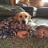 Photo for Babysitter Needed For 2 Children In Penngrove