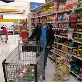 Photo for Looking For A Pet Sitter For 1 Dog In Columbia