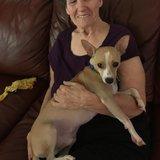 Photo for Companion Caregiver