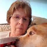 Photo for Transportation Senior Caregiver