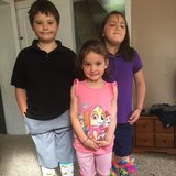 Photo for In Home Babysitter Needed For 3 Children In Fremont.