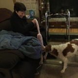 Photo for Seeking Part-time Senior Care Provider In Bangor