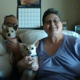 Photo for Looking For A Dependable House Cleaner For Senior Couple Living In Boise