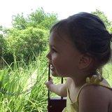 Photo for Babysitter Needed For My Children In Martinsville