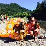 Photo for Dog Walker/Hiker/ Runner Needed For 1 Lovable Dog In Mill Valley