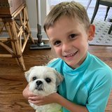 Photo for Walker Needed For 1 Dog In Englewood