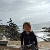 Photo for Regular Help / Nanny Needed For 3 Yr Old In San Francisco