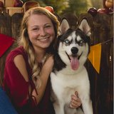 Photo for Dog Sitter For Playful Husky In Bradenton
