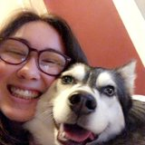 Photo for Part Time Help Walking My Husky!