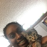 Photo for Looking For A Pet Sitter For 1 Cat In Lake Worth