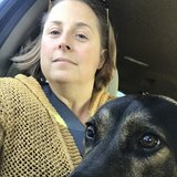 Photo for Looking For A Dog Trainer In Berkeley