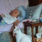 Photo for Seeking Part-time Senior Care Provider In Tiverton