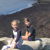 Photo for After School Household Help/Errands/ Childcare Needed For 3 Children In Sewickley