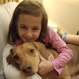 Photo for Looking For A Pet Sitter For 2 Dogs In Elkton