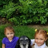Photo for Nanny Needed For 2 Children In Willimantic.