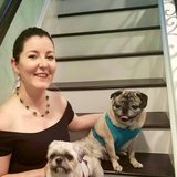 Photo for Looking For A Pet Sitter For 2 Dogs In Anaheim Hills
