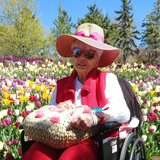 Photo for Seeking 24/7 Senior Care Providers In Salt Lake City