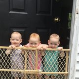 Photo for Babysitter Needed For Triplets In Canal Winchester