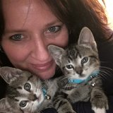 Photo for Need Kitten Sitter For Next Week 12-8 Through 12-13. Very Adorable, Sweet, Playful 5 Month Olds.