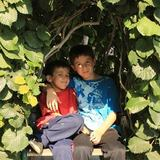 Photo for After School Care Twice A Week Needed For 2 Children In Sunnyvale (ongoing)